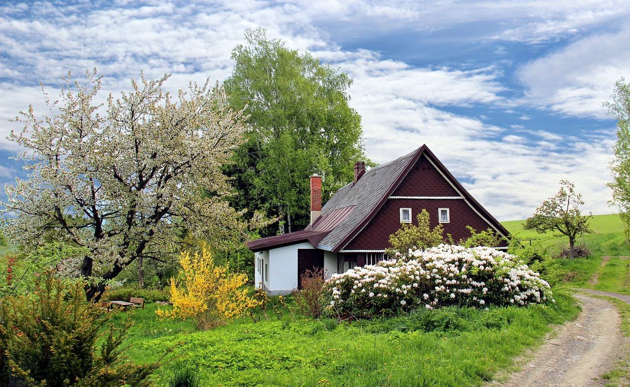 tuinontwerp in Aalsmeer